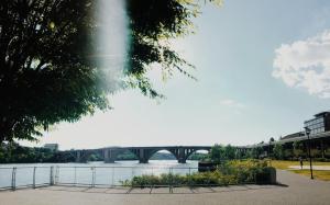 Le fleuve Potomac  Washington DC